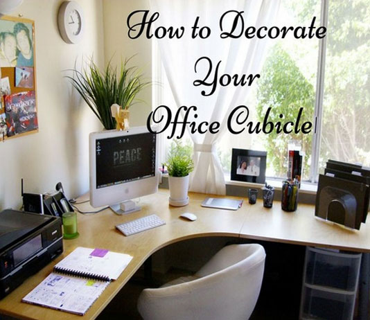 What Are The 15 Best Office Decoration Ideas And Tips Vastu